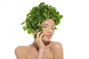 le-piante-del-benessere